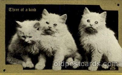 cat001632
