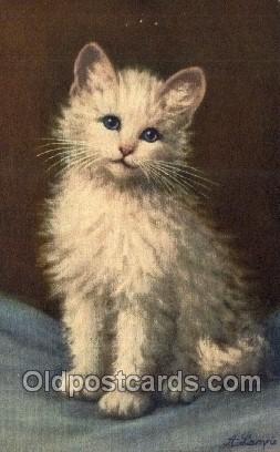 cat001837