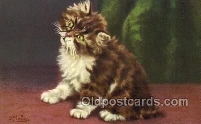 cat001851