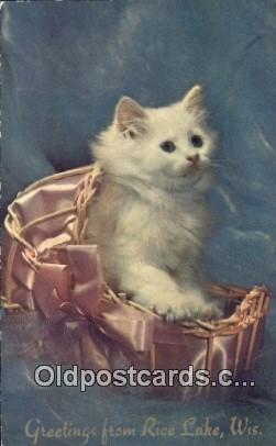 cat001903