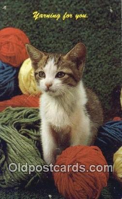 cat001949