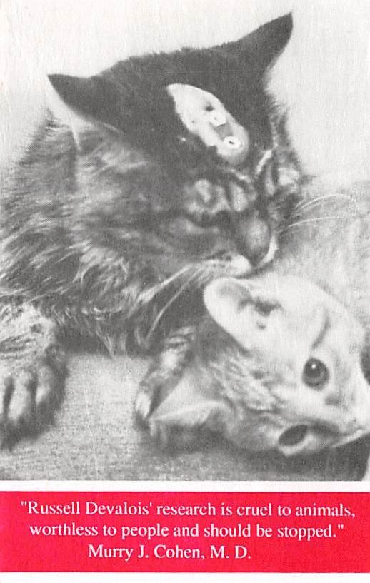 cat300129