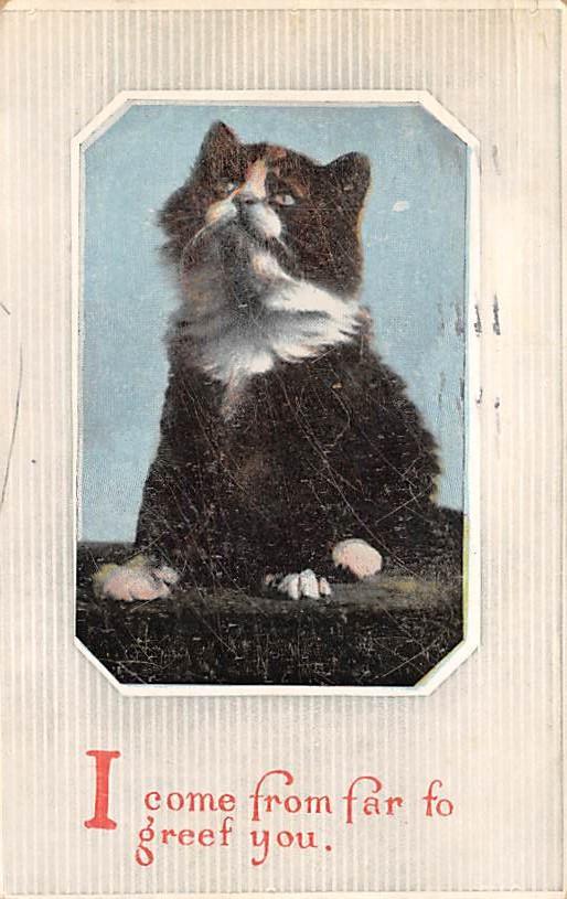 cat300405