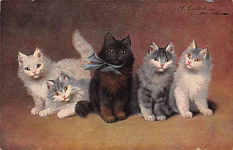 cat300437