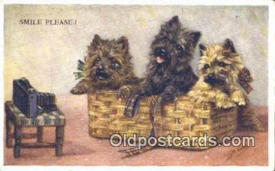 cam001282 - Camera Postcard, Post Card Old Vintage Antique