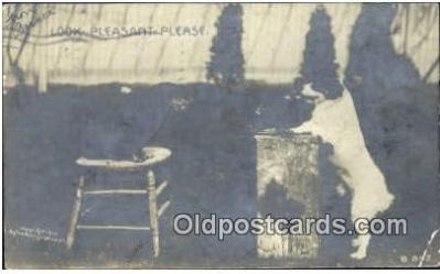 cam001334 - Rotograph Co. Camera Postcard, Post Card Old Vintage Antique