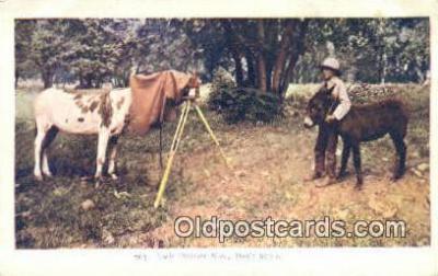 cam001348 - Camera Postcard, Post Card Old Vintage Antique