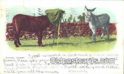 cam001415 - Camera Postcard, Post Card Old Vintage Antique