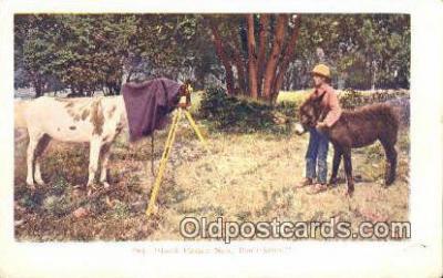 cam001435 - Camera Postcard, Post Card Old Vintage Antique
