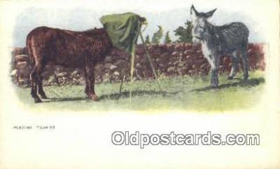 cam001480 - Camera Postcard, Post Card Old Vintage Antique