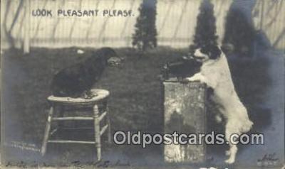 cam001562 - Camera Postcard, Post Card Old Vintage Antique