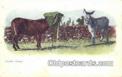 cam001575 - Camera Postcard, Post Card Old Vintage Antique