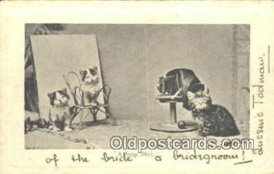 cam001620 - Camera Postcard, Post Card Old Vintage Antique