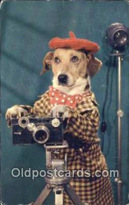 cam001743 - Camera Postcard, Post Card Old Vintage Antique
