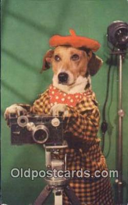 cam001819 - Camera Postcard, Post Card Old Vintage Antique