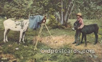 cam001888 - Camera Postcard, Post Card Old Vintage Antique