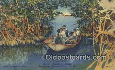 cam001898 - Everglades National Park, Florida USA Camera Postcard, Post Card Old Vintage Antique