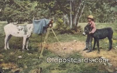 cam100020 - Camera Postcard Post Card Old Vintage Antique
