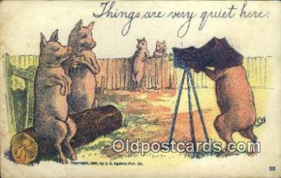 cam100206 - Camera Postcard Post Card Old Vintage Antique