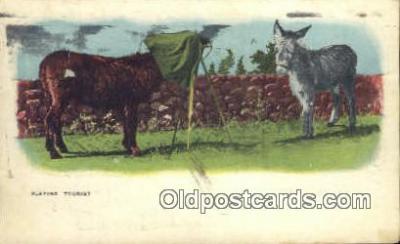 cam100282 - Camera Post Card Postcard Old Vintage Antique