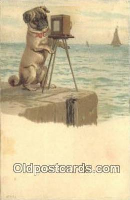 cam100339 - Camera Post Card Postcard Old Vintage Antique