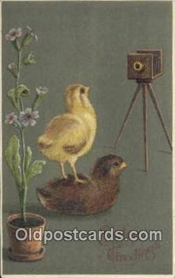 cam100342 - Camera Post Card Postcard Old Vintage Antique