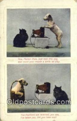 cam100352 - Camera Post Card Postcard Old Vintage Antique
