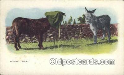 cam100440 - Camera Post Card Postcard Old Vintage Antique