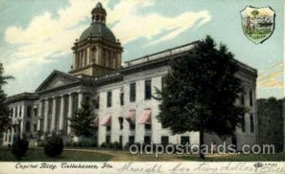 cap001329 - Tallahassee, Fl, Florida, USA United States State Capital Building Postcard Post Card
