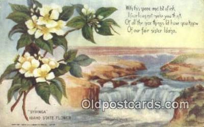 cap001671 - Boise, Idaho, ID  State Capital, Capitals Postcard Post Card USA