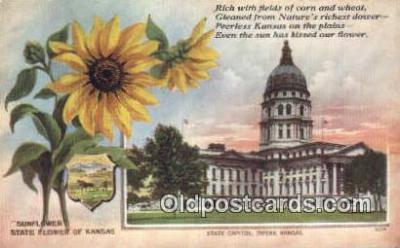 cap001964 - Topeka, Kansas, KS  State Capital, Capitals Postcard Post Card USA
