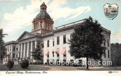 cap002462 - Capitol Building Tallahassee, FL, USA Postcard Post Card