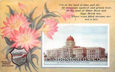 cap002498 - State Capitol Helena, Montana, USA Postcard Post Card