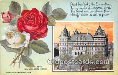 cap002506 - Rose, State Capitol Albany, NY, USA Postcard Post Card