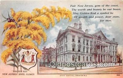 cap002508 - Goldenrod, State Capitol Trenton, NJ, USA Postcard Post Card