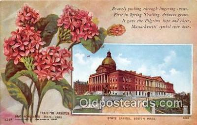 cap002516 - Trailing Arbutus, State Capitol Boston, Mass, USA Postcard Post Card