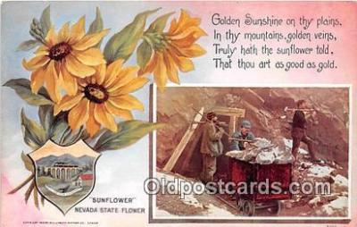 cap002520 - Sunflower Nevada, USA Postcard Post Card