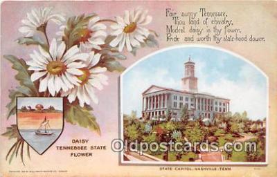 cap002529 - Daisy, State Capitol Nashville, TN, USA Postcard Post Card