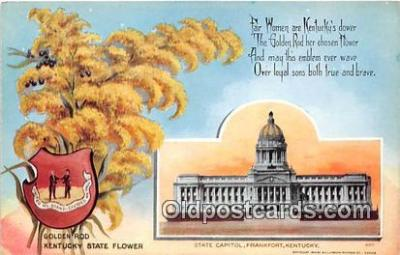 cap002533 - Goldenrod, State Capitol Frankfort, KY, USA Postcard Post Card