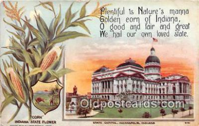 cap002534 - Corn, State Capitol Indianapolis, Indiana, USA Postcard Post Card