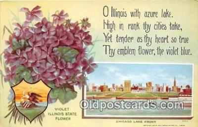 cap002547 - Violet, State Capitol Chicago Lake Front, USA Postcard Post Card