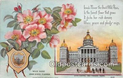cap002548 - Wild Rose, State Capitol Des Moines, Iowa, USA Postcard Post Card
