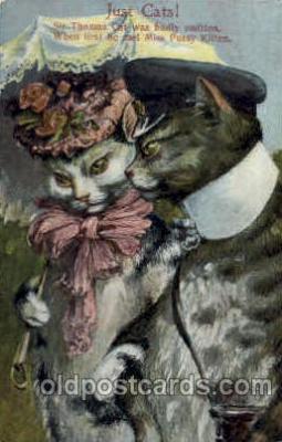 cat001196 - Cat Cats Postcard Post Card