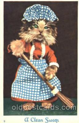 cat001206 - Cat, Cats Postcard Post Card