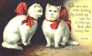 cat001235 - Cat, Cats Postcard Post Card
