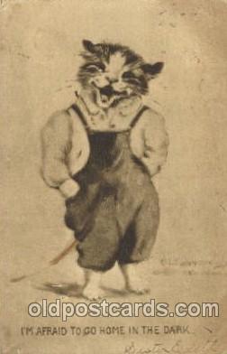 cat001278 - Cat, Cats, Postcard Post Card