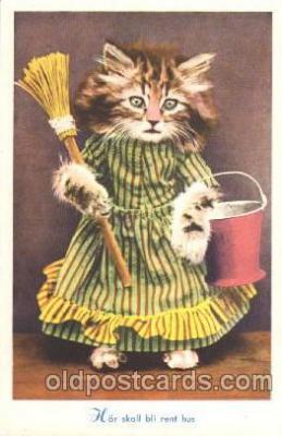 cat001280 - Cat, Cats, Postcard Post Card