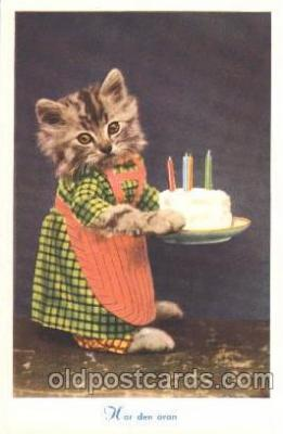 cat001283 - Cat, Cats, Postcard Post Card