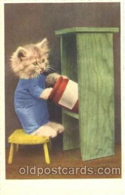 cat001284 - Cat, Cats, Postcard Post Card