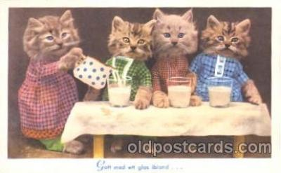 cat001303 - Cat, Cats, Postcard Post Card